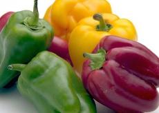 Equilibre alimentaire et coaching par votre nutritionniste à Soyaux (16)